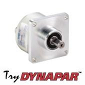 AI25-ssi-try-dynapar