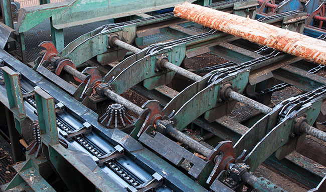 Cutting Line Saw Mill image